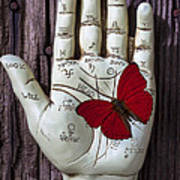 Palm Reading Hand And Butterfly Poster