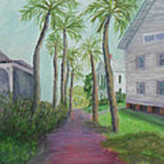 Palm Row In St. Augustine Florida Poster