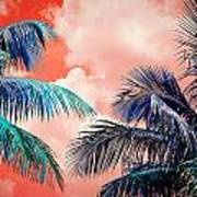 Palmscape Red Poster