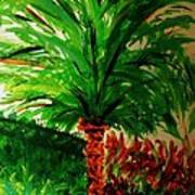 Palm Tree In The Garden Poster by Marie Bulger