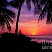 Palm Tree Sunset In Paradise Poster