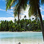 Palm Trees On The Beach, Rangiroa Poster