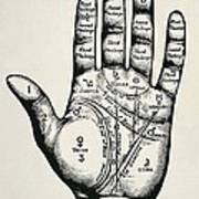 Palmistry. Planetary And Zodiacal Poster