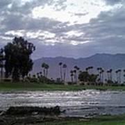 Palms Springs Flood Poster