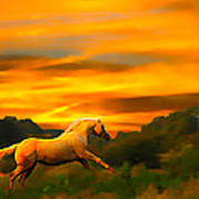 Palomino Pal At Sundown Poster