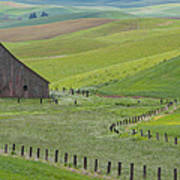 Palouse Barn And Fence Poster