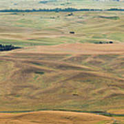 Palouse Palate Poster