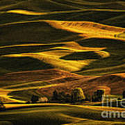 Palouse Sunset From Steptoe Butte Poster