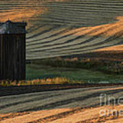 Palouse Sunset Poster by Sandra Bronstein