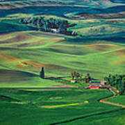 Palouse - Washington - Farms - 4 Poster