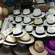 Panama Hats In Ecuador Poster