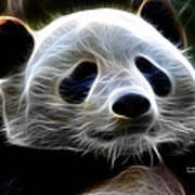 Panda - 4934 - F Poster