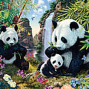 Panda Valley Poster