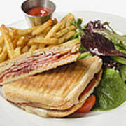 Panini With Ham Melted Cheese French Fries And Salad Poster