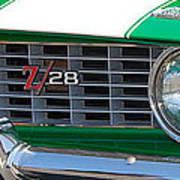 panoramic green Z28 Poster