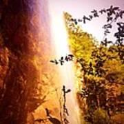 Paradise Falls Poster