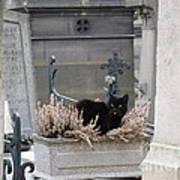 Paris Cemetery Cat - Le Chats Noir - Pere Lachaise - Black Cat On Grave Cemetery Art Poster by Kathy Fornal
