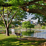 Park Bench By A Lake Poster