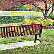 Park Bench By The Pond Poster