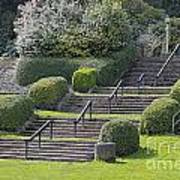 Park Stairs Poster