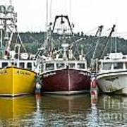 Parked Fishing Boats Poster