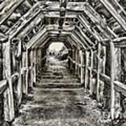 Partington Cove Tunnel By Diana Sainz Poster