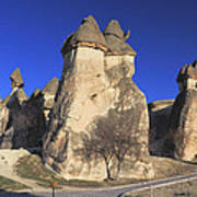 Pasabag Goreme National Park Cappadocia Turkey Poster