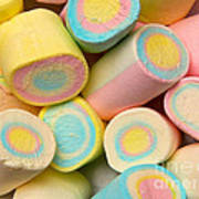 Pastel Colored Marshmallows Poster