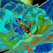 Pastel Dragonfly Rose Poster