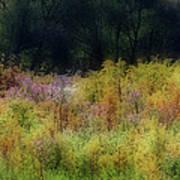 Pastel Field Poster