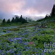 Pastel Mountain Dawn Poster
