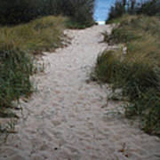 Path To The Dunes Poster