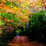 Paths We Choose Poster