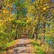 Pathway Along The Ohio And Erie Canal  Poster
