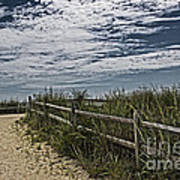 Pathway To The Sea Poster by Tom Gari Gallery-Three-Photography