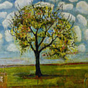 Patterned Sky Poster