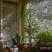 Patterns in Light Through Dining Room Window Poster