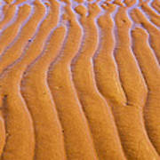 Patterns In The Sand At Low Tide Poster by Diane Diederich