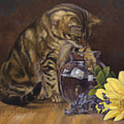 Paw In The Vase Poster