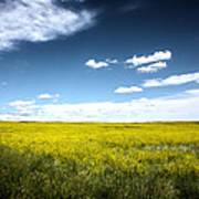 Pawnee Grasslands Poster
