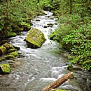 Peaceful Flowing Waters Poster
