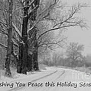 Peaceful Holiday Card Poster