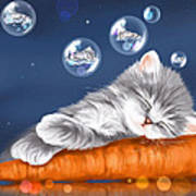 Peaceful Sleep Poster
