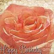 Peach Rose Birthday Card Poster