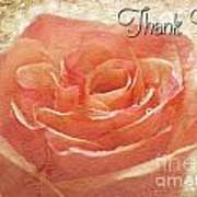 Peach Rose Thank You Card Poster