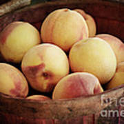 Peaches In A Basket Poster