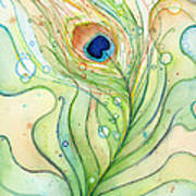 Peacock Feather Watercolor Poster