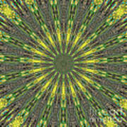 Peacock Feathers Kaleidoscope 5 Poster