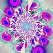 Peacock Flower Poster
