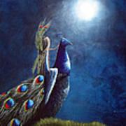 Peacock Princess II By Shawna Erback Poster